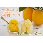 ふるさと納税 愛南町 みかん職人が作った柑橘アイス1000ml×2種(河内晩柑・しらぬい)