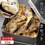 ふるさと納税 石巻市 豪快!漁師の牡蠣カンカン焼きセット