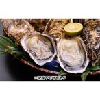 ふるさと納税 呉市 ナバラ水産 殻付き牡蠣30ヶ 生牡蠣(むき身)1.6kg食べ比べセット[NO5624-0301]