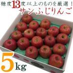 ふるさと納税 長井市 糖度13度以上厳選!サンふじりんご5kg