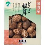 全農 どんこ椎茸 SK-25A || 内祝 シイタケ 椎茸 どんこ 干し 食品 食べ物 ギフト 贈り物 詰め合わせ セット