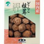 全農 どんこ椎茸 SK-20A    内祝 シイタケ 椎茸 どんこ 干し 食品 食べ物 ギフト 贈り物 詰め合わせ セット