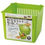 スケーター 冷蔵庫野菜室 整理ケースR グリーン CVBR1