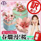 訳あり!春爛漫 桜セット 福袋