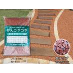 瓦チップ びんご テコラ Lサイズ 赤 ガーデニング DIY