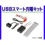 USBスマホ充電キット トヨタ アルファード H20.5〜
