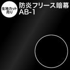 アンマクヤオリジナルフリース暗幕AB-1 10cm単位 生地カット売り 遮光1級 防炎 テカリ低減 暗幕 あんまく 遮光カーテン