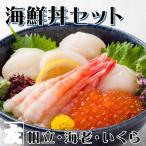 海鮮丼セット 魚介類詰め合わせ 海鮮詰め合わせ セット マグロ ズワイガニ いか 甘エビ わさび お中元