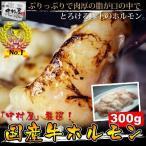 送料無料!焼肉 もつ鍋 国産牛ホルモン300g(小腸 ホルモン焼き 牛ホルモン バーベキュー BBQ)