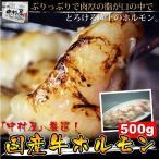 雅虎商城 - 【送料無料】焼肉 もつ鍋 国産牛ホルモン500g(小腸 ホルモン焼き バーベキュー BBQ)