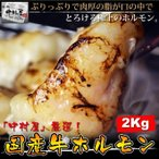 雅虎商城 - 【送料無料】焼肉 もつ鍋 国産牛ホルモン2Kg(小腸 ホルモン焼き バーベキュー BBQ)