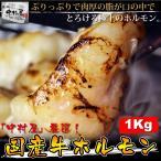 雅虎商城 - ホルモン 送料無料 国産牛ホルモン 1kg 小腸 もつ もつ鍋 バーベキュー 牛肉 父の日 BBQ ギフト 焼肉