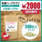 ガジュツ 紫ウコン 屋久島産100% 粒タイプ ハーブサプリ Gajutsu 240粒入り(約1ヶ月分)
