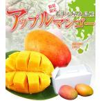 屋久島産アップルマンゴー
