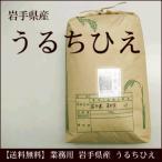 業務用 うるちひえ 岩手県産 20kg 雑穀