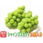 【贈答用】温室栽培シャインマスカット信州長野県産!2房化粧箱入り。7月下旬から発送予定!