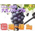 【送料無料】ナガノパープル信州長野県産、2kg!9月上〜中旬から順次発送!