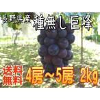 【送料無料】信州長野県産、種無し巨峰2kg!9月中旬から順次発送!