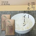 米 20kg 送料無料 ミルキークイーン 令和元年産 10kg×2袋 白米 精米 一等米 栃木県産 日光市産