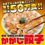 かかし餃子 冷凍食品 中華 惣菜 ギフト プレゼント お取り寄せグルメ