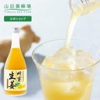 山田養蜂場 蜂蜜生姜ドリンク(レモン果汁入) 500ml はちみつ ギフト