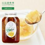 【山田養蜂場】しょうがはちみつ漬 900g /はちみつ /ギフト