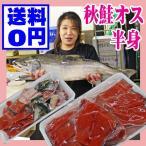 生 秋鮭 オス 半身 3kg前後を半身 切り身 送料無料 山形県産 生冷蔵 日にち指定不可能 食品 魚介類 海産物 鮭