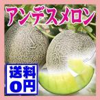 メロン 3L4玉 送料無料 山形県産 庄内砂丘アンデスメロン果物 フルーツ