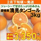 みかん 愛媛県産「清見タンゴール」 秀品3kg 約10個(L・2Lサイズ)