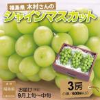 ぶどう シャインマスカット 9月上旬頃から発送 福島県産 大粒シャインマスカット 秀品 1,8kg以上(計3房) 送料込