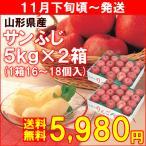 りんご 山形県産サンふじ 秀品5kg(16�18個)×2箱