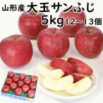 初売り セール りんご 山形県産「大玉サンふじ」 秀品5kg(10〜16個) 送料込