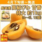 びわ 4月下旬頃から発送・長崎県産「高級びわ 甘香」 特大 約1kg(4〜5Lサイズ12個)