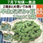 yamagata-kikou_y12-069