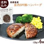 庄内SPF豚ハンバーグ 120g×6個 ハンバーグ 温めるだけ ハンバーグ 冷凍