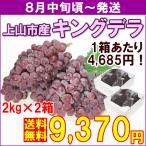 ぶどう キングデラ 8月中旬頃から発送・山形県上山市産「キングデラ」 秀品 2kg(5〜8房)×2箱