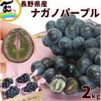 ぶどう ナガノパープル 9月上旬頃から発送・長野県産「ナガノパープル」 秀品 2kg(3〜4房) 送料込
