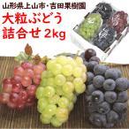 ぶどう 山形県上山市産「大粒ぶどう詰合せ」 2,3kg(3種類以上・3〜5房) 送料込