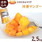 トロピカルマリア 冷凍マンゴー 500g×5袋 ※ペルー産アップルマンゴー使用 送料込