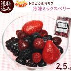 トロピカルマリア 冷凍ミックスベリー 500g×5袋