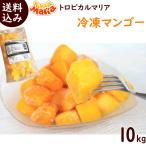 まとめ買い トロピカルマリア 冷凍マンゴー 500g×20袋 ※ペルー産アップルマンゴー