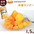 トロピカルマリア 冷凍マンゴー 500g×3袋 ※ペルー産アップルマンゴー使用 送料込