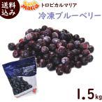 トロピカルマリア 冷凍ブルーベリー 500g×3袋