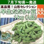 yamagata-kikou_yf0722