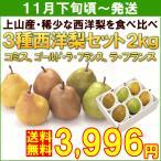 洋梨 セット 上山市産「3種西洋梨セット」 2kg(3種各2個)