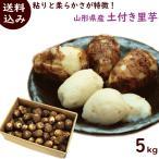 いも さといも 10月中旬頃から発送・山形県産土付き里芋 5kg(MサイズもしくはLサイズ) 送料込