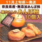 柿 あんぽ柿 奈良県堀内農園「あんぽ柿」 10個入