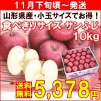 りんご 山形県産食べきりサイズサンふじ 秀品10kg(40個)