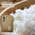 《うまいず米》山形県産はえぬき10kg(精米)<令和2年度産>