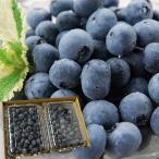 山形の完熟生ブルーベリー1kg(500×2パック)[箱入]